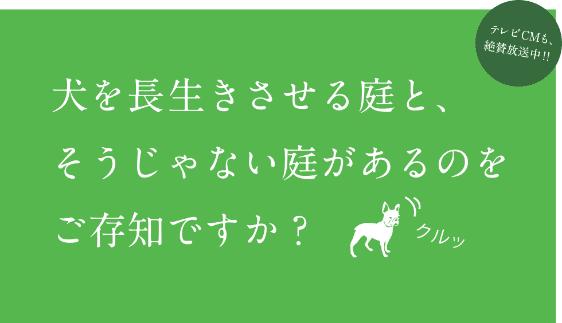 犬を長生きさせる庭と、そうじゃない庭があるのをご存知ですか?